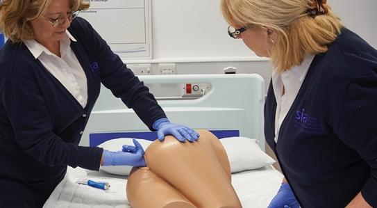 НОВИНКА // Тренажер для обстеження прямої кишки, оцінки калу та практики клізменних процедур