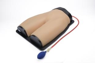НОВИНКА // Модель місцевої анестезії нижньої частини тулуба за допомогою ультразвуку