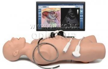VimedixCardiac - навчання техніки ехокардіографічних досліджень