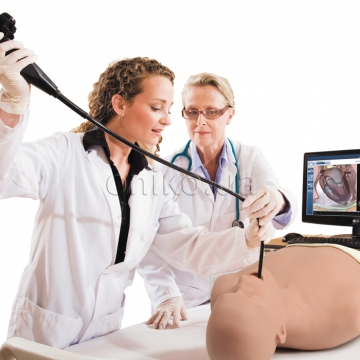 Ultrasound models